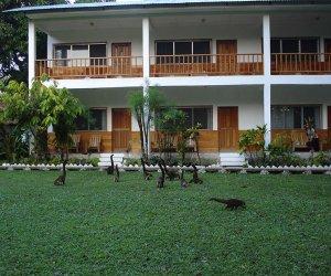 Junior-suite-Vista-a-la-Selva.jpg
