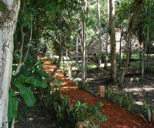 Ranchon-Vista-a-la-Selva.jpg